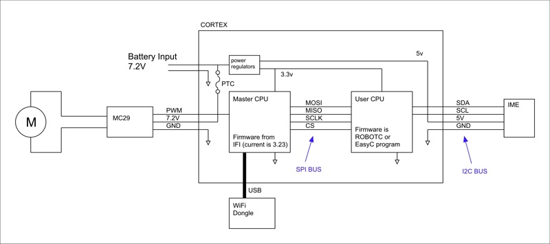 cortex_2.jpg