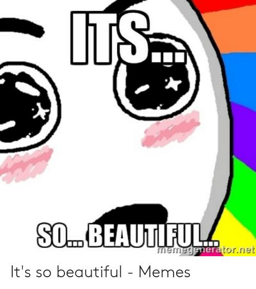 net-nierniegenerator-ie-its-so-beautiful-memes-48832771